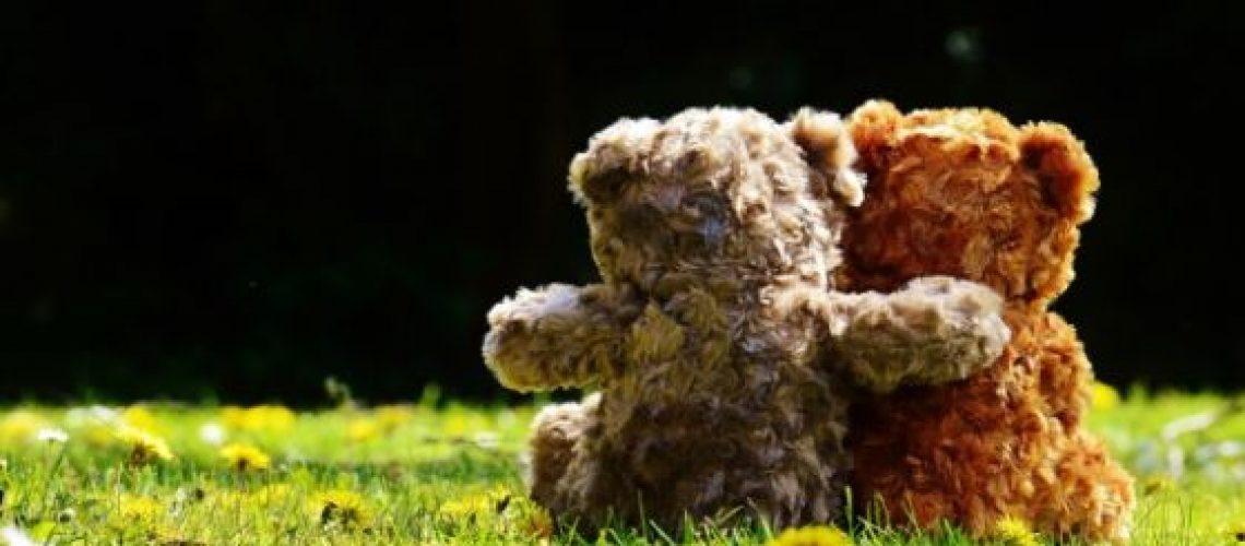 Doneer een beer